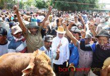 PASAR SAPI TUBAN: Cagub mendapat dukungan dari pedagang sapi saat mengunjungi Pasar Sapi di Tuban, Minggu (27/5). | Foto: Barometerjatim.com/MARIJAN AP