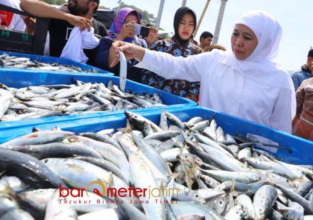 TPI SENDANG BIRU: Cagub Khofifah Indar Parawansa mengunjungi TPI Sendang Biru, Malang, Jumat (25/5).   Foto: Barometerjatim.com/MARIJAN AP
