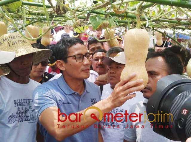 SANDI BERSAMA PETANI LAMONGAN: Sandiaga Uno saat menemui para petani di Desa Besur, Kecamatan Sekaran, Lamongan, Selasa (4/12).   Foto: Barometerjatim.com/HAMIM ANWAR